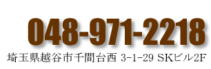 048-971-2217